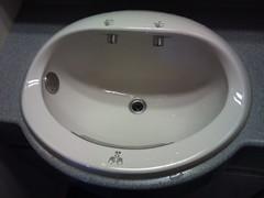 swimming pool(0.0), wheel(0.0), jacuzzi(0.0), bathtub(0.0), toilet seat(0.0), bidet(0.0), plumbing fixture(1.0), sink(1.0),