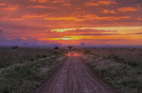 africa road park city morning pink trees sky orange grass yellow skyline truck sunrise canon aj day cityscape jeep cloudy kenya nairobi safari national dust hdr brustein 50d