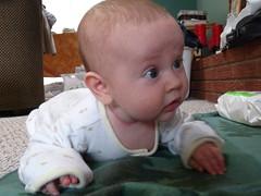 child, infant, crawling, skin, person, toddler, organ,