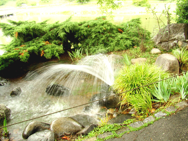 fotos de mini jardim japonesJardim Japonês – Mini Cascata