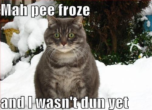 Mah pee froze and I wasn't dun yet