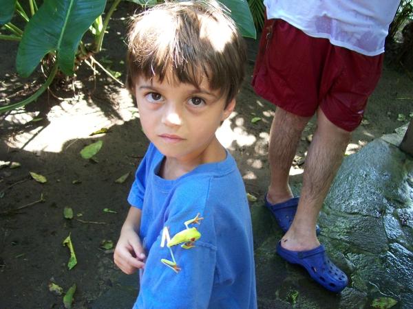 Mawamba Lodge in Tortuguero Costa Rica - froggy love