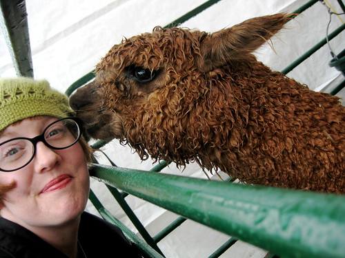 365.320 (zomg alpaca kisses!)