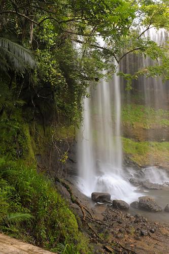 nikon rainforest nikkor fx palau 2470mm d700 ngardmau 2470mmf28g babeldaub