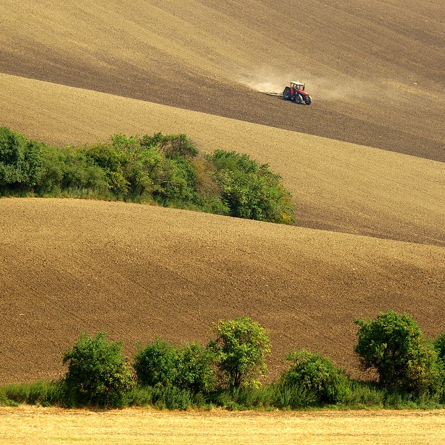 Nothing Comes Free ~ South Moravia, Czech Republic
