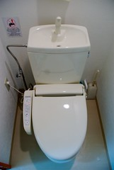 urinal(0.0), ceramic(0.0), bidet(0.0), sink(0.0), toilet(1.0), plumbing fixture(1.0), toilet seat(1.0),