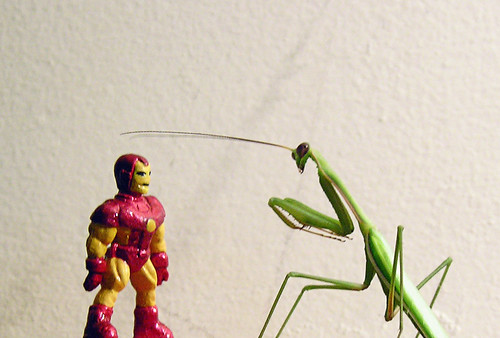 THE INCREDIBLE SHRINKING IRON MAN - THE RETURN OF...THE MANTIS!!