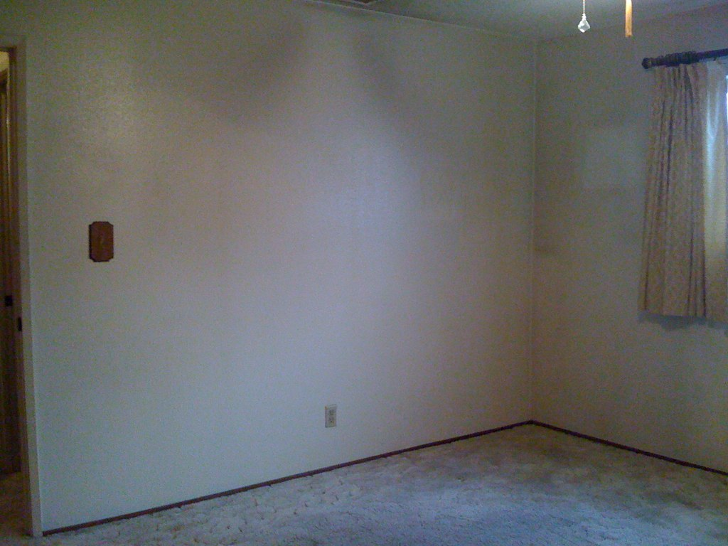 The bedroom was the very first room to get completely cleaned out!