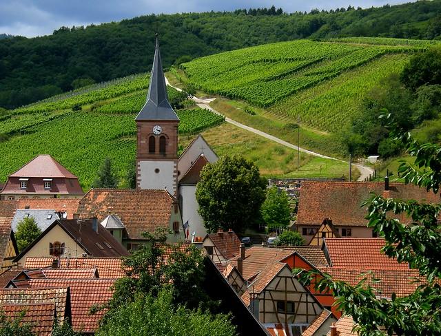 Albé, son église, ses vignes et ses bois