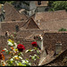 Thirteenth century roofs  :) by ▪ Paul Blanchard ▪