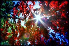 sunny... :)