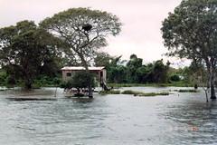 natural disaster, flood, event, river, bayou, disaster,