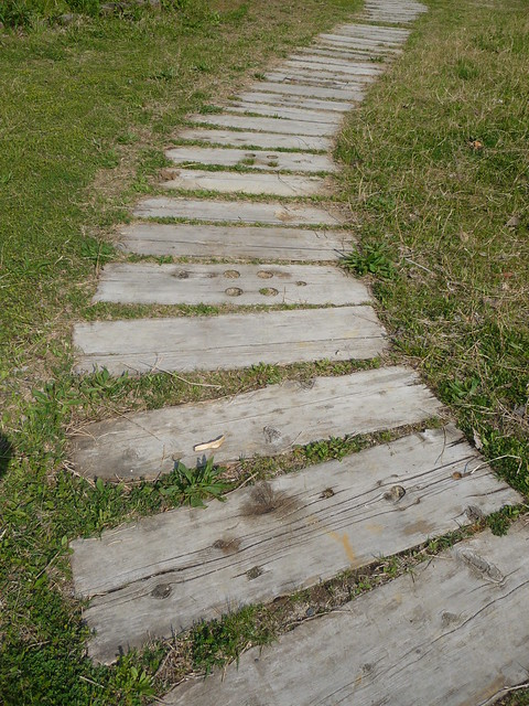 a wooden path flickr photo sharing