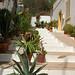 Small photo of Algarve