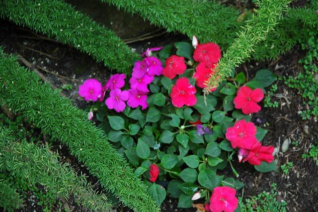 Meditation Garden Self Realization Fellowship Encinitas California Usa 3273 Flickr