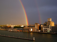 Rijnhaven Rainbows