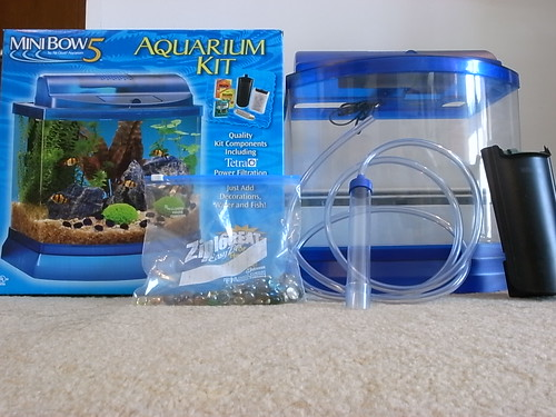Betta tank filter current checking out the minibow 5 and for Betta fish tank with filter