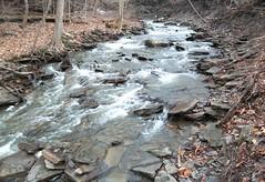 Tanney Creek Falls