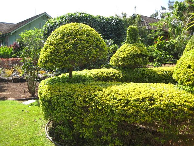 Photo - National tropical botanical garden ...