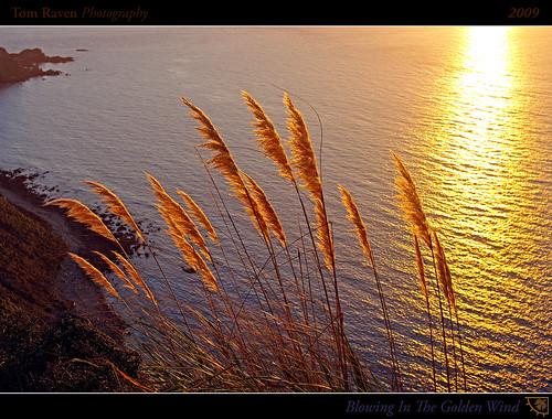 ocean light sunset sea newzealand sun water reflections geotagged golden bay interestingness framed explore toitoi frontpage 2009 explored boomrock inexplore platinumphoto tomraven geo:lat=41166733 geo:lon=174763534 q209