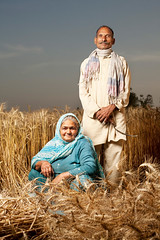 Idian Couple in Wheat