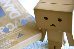 wedding favors(0.0), paper(0.0), carton(0.0), design(0.0), lighting(0.0), toy(0.0), cardboard(1.0),