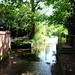 Small photo of Dedham Essex