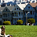 Small photo of Alamo Square