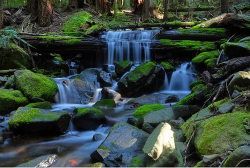 longexposure washington waterfalls olympicnationalpark horainforest