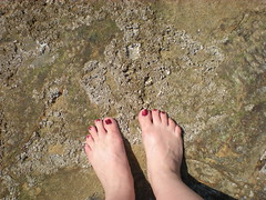 barefoot on the tidepools