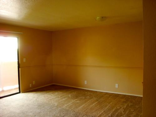 The Empty Apartment