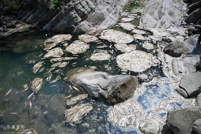 台南私藏景點--關山千層岩瀑布、幽情瀑布 (40)