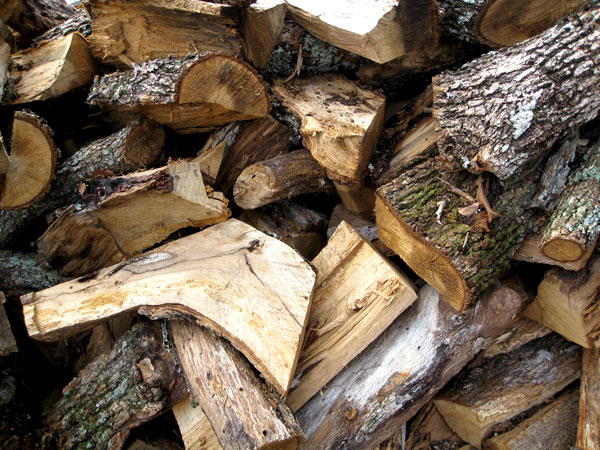 Oak Wood Logs ~ Choosing charcoal and wood for your smoker or grill