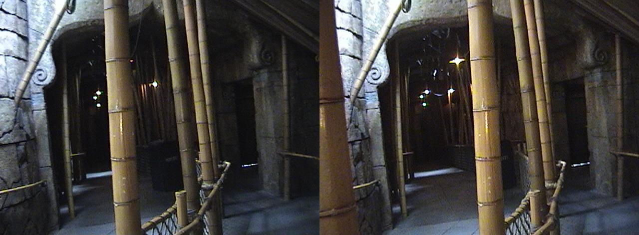 3D, Avenue of Voices, Queue, Indiana Jones™ Adventure - The Temple of the Forbidden Eye, Adventureland, Disneyland®, Anaheim, California, 2009.02.23 13:31