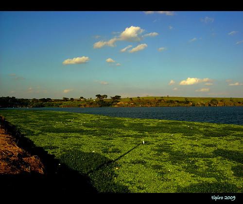 Nice Nature River photos
