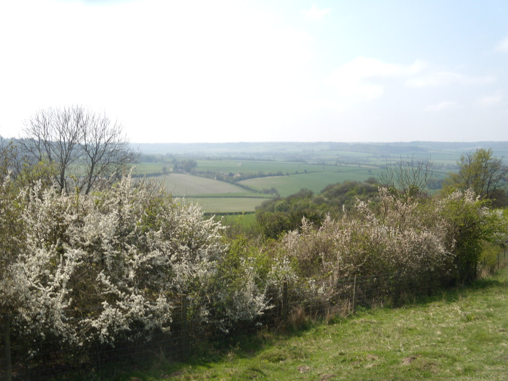 View from Brush Hill Wendover Circular