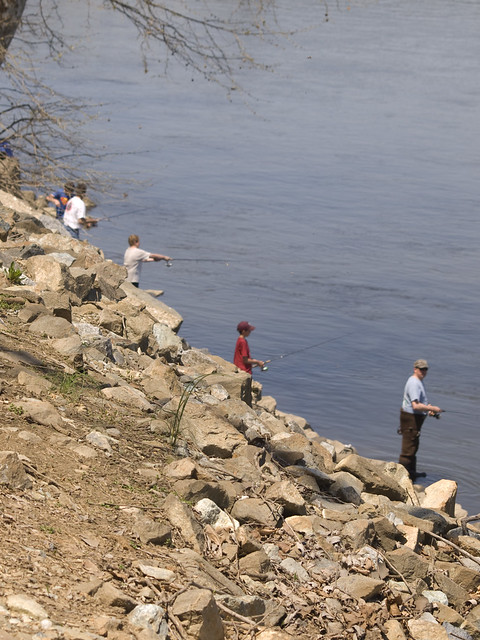 fishing at conowingo dam flickr photo sharing