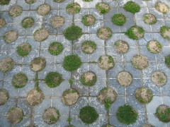 Tiles and grass