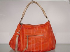 bag(1.0), orange(1.0), shoulder bag(1.0), hobo bag(1.0), handbag(1.0), tote bag(1.0),