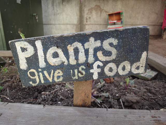 photo of words, plants give us food