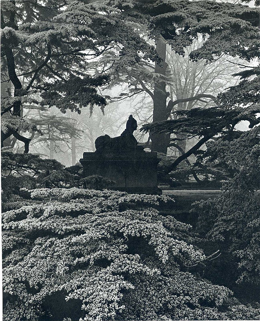 Chiswick House Gardens Sphinx, by Bill Brandt 1944