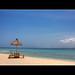 Small photo of Island Paradise