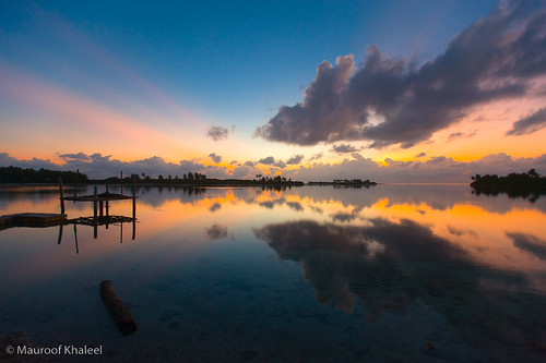 Reflection Addu