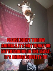 CAT-throwing