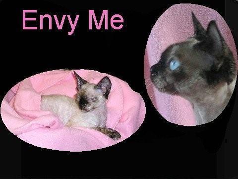 Minky's Story