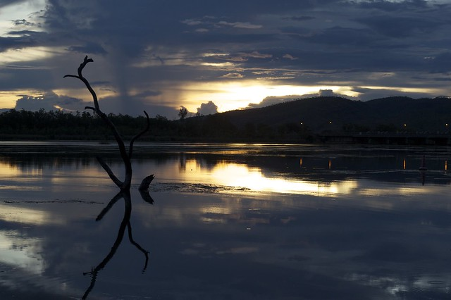 The Swim Beach Tree Sunset - Not Lake Argyle but Lake Kununurra