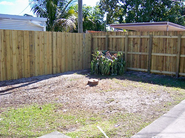New Backyard Fence : New Backyard Privacy Fence  Flickr  Photo Sharing!