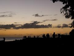 Sunset Strawlers