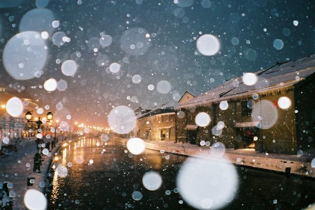 winter blue [explored ♥]