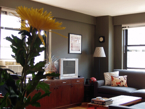 Real homes dark green gray living room ralph lauren for Dark colored rooms